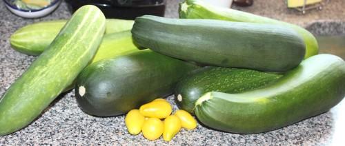 zucchini-small